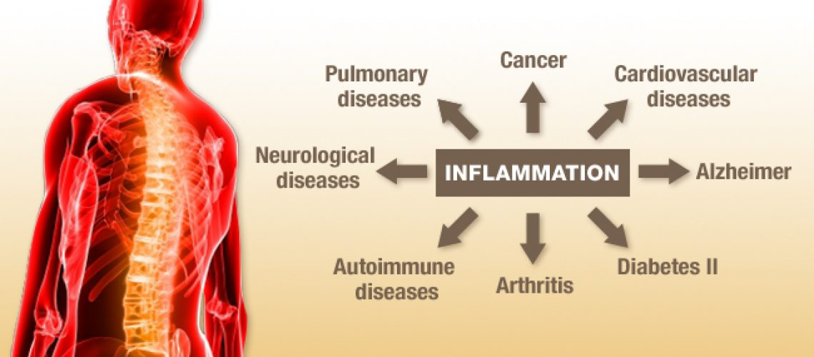 Lifestyle Related Diseases Caused by Chronic Inflammation